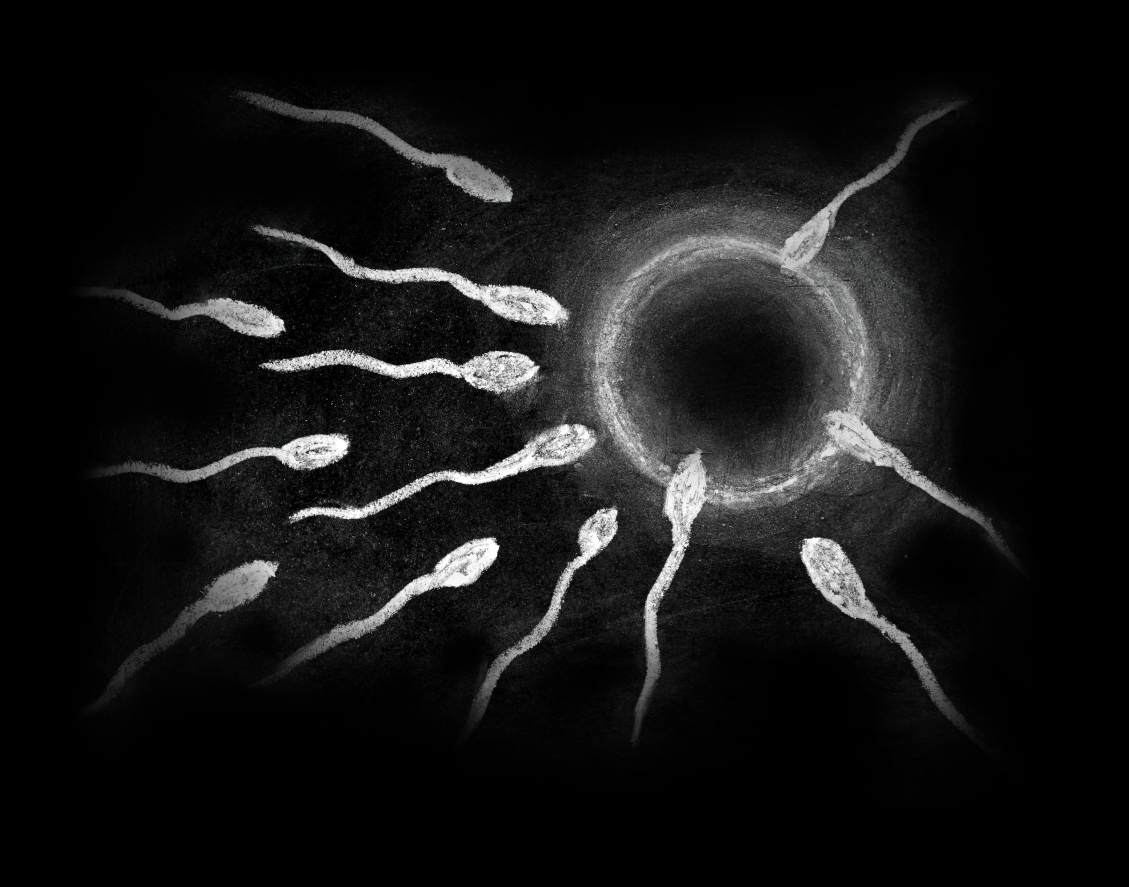 Male Fertility Options After a SCI
