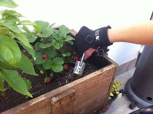 active hands gardening
