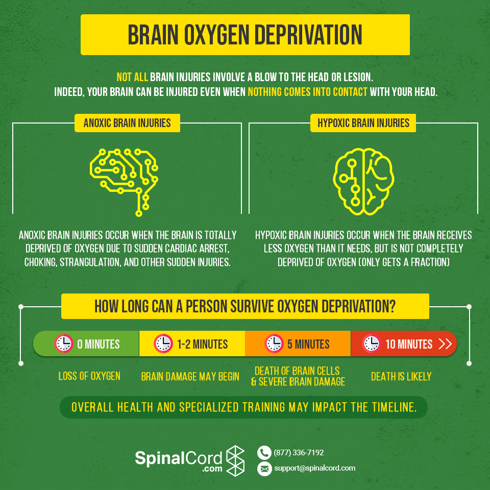 Cerebral Hypoxia, Cerebral Anoxia, Oxygen Deprivation Infographic