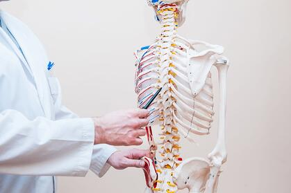 medical doctor man pointing at spinal cord injury areas using human skeleton model