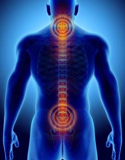highlight-of-cervical-and-sacral-spine