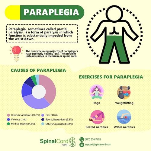 Infographic-Paraplegia