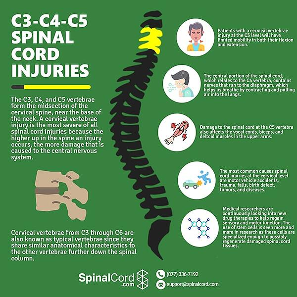 cervical-spine-c3-c4-c5-spinal-cord-injuries-min