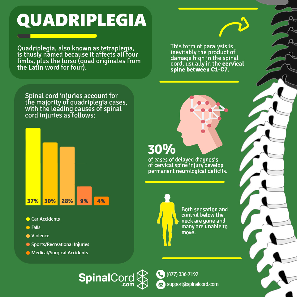 Infographic-Quadriplegia-Tetraplegia
