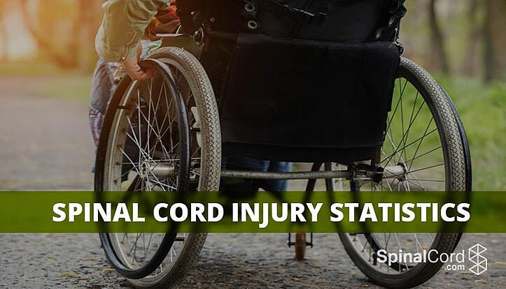 Spinal-Cord-Injury-Statistics