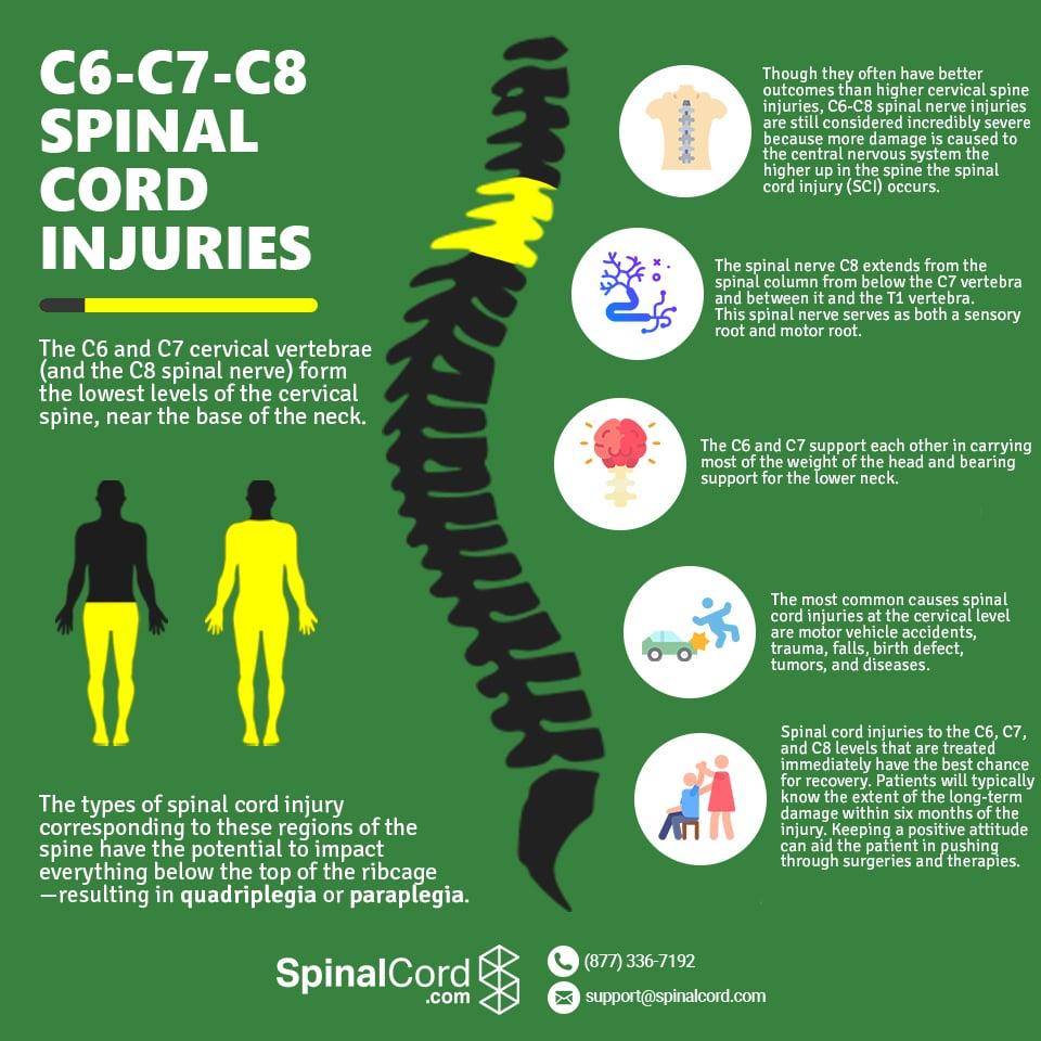 cervical spine c6 c7 c8 spinal cord injury