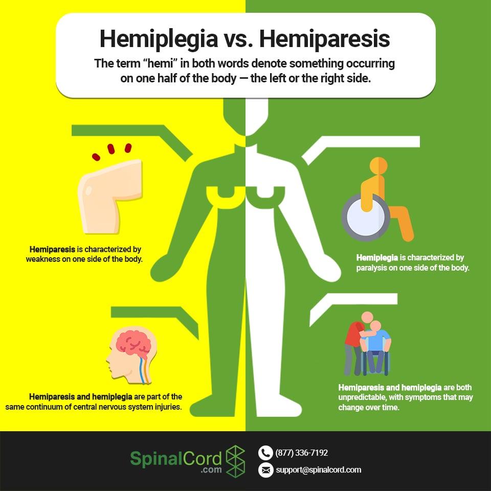 Infographic-Hemiplegia-Hemiparesis