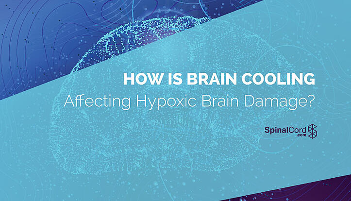 How Is Brain Cooling Affecting Hypoxic Brain Damage