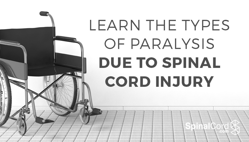 Learn-the-types-of-paralysis-wheelchair