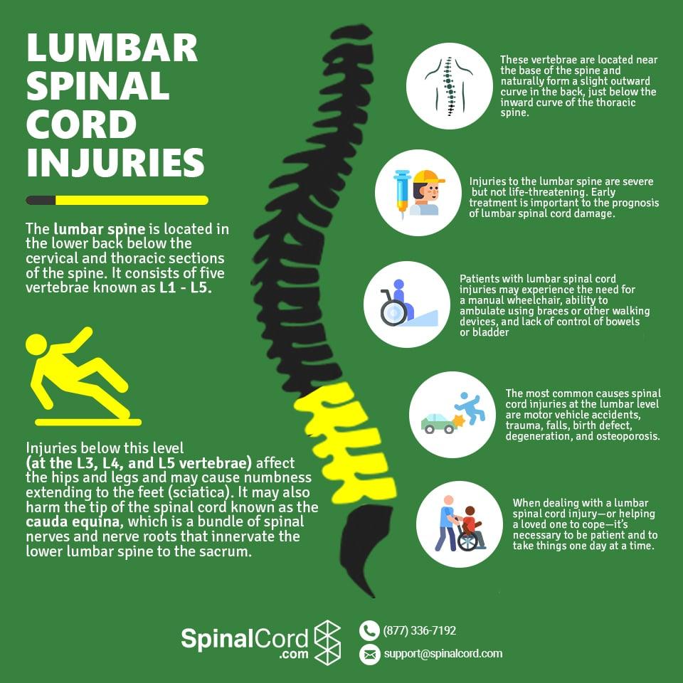 lumbar infographic