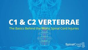 C1-C2-Vertebrae-Injuries-Title-Card