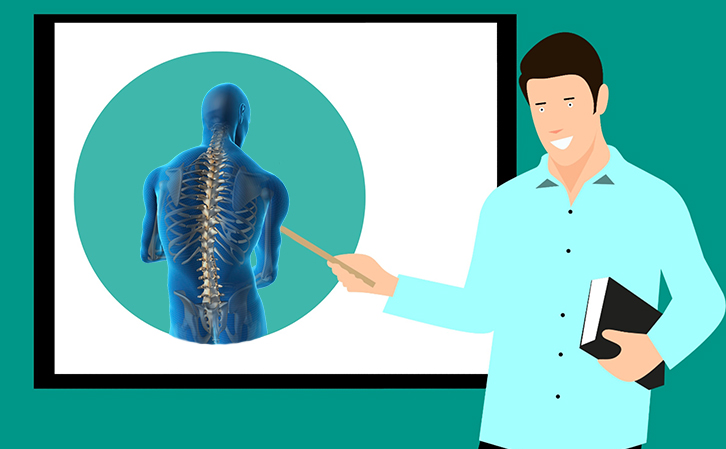 teaching about spinal cord