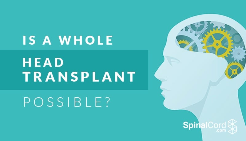 is neurological transplant possible