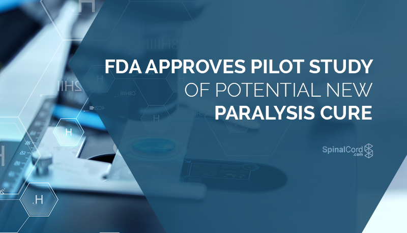 FDA Approves Pilot Study of Potential New Paralysis Cure