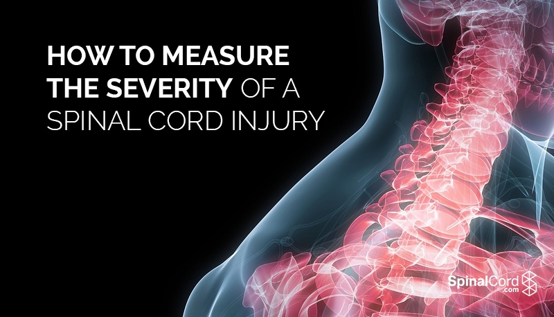 Image Result For Spinal Cord Injury Lawyer