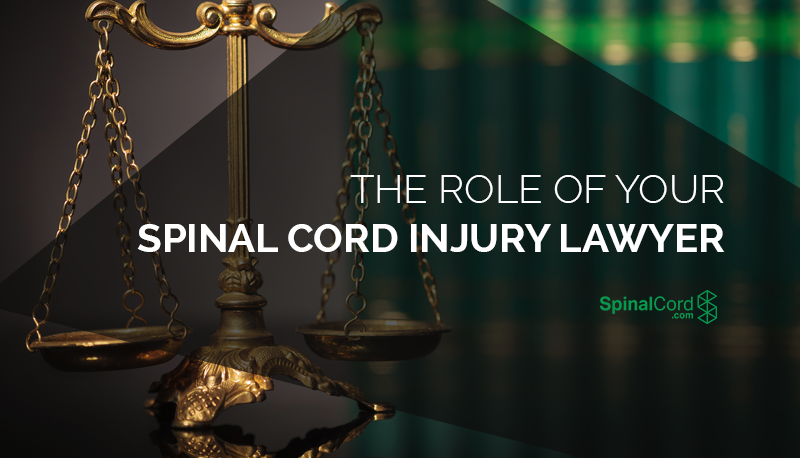 The-Role-of-Your-Spinal-Cord-Injury-Lawyer-Blog-IMG.png